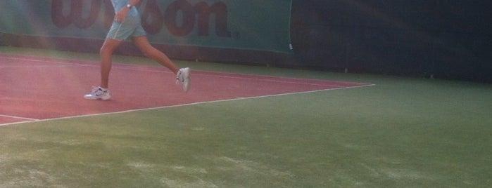 Teren de tenis is one of Fun.