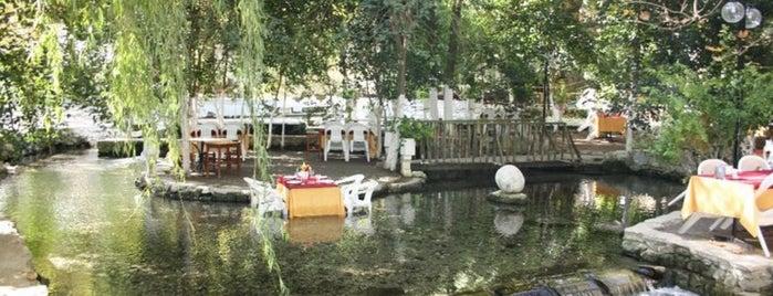Pınarbaşı Restaurant is one of Yol üstü.