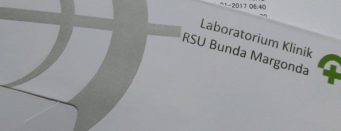 RSU Bunda Margonda is one of It's a Boy! & It's a Girl! Badge.