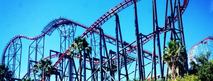 Six Flags Magic Mountain is one of I've been here.