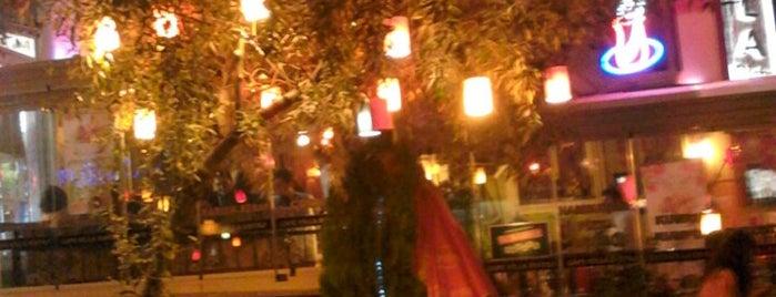 Cafe Villa Bistro is one of EN FAVORİ MEKANLAR!!!!!!!!!.