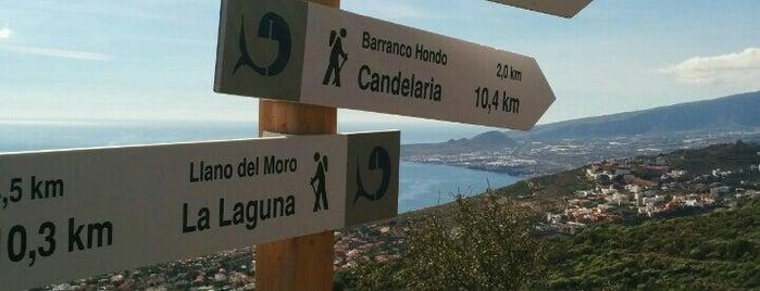 Machado is one of Ruta por La Laguna, La Esperanza y El Teide.