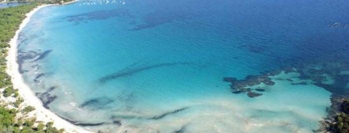 Plage Scaffa Rossa is one of Corsica.