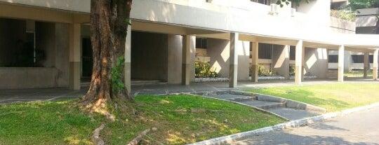 School of Economics is one of UPD.