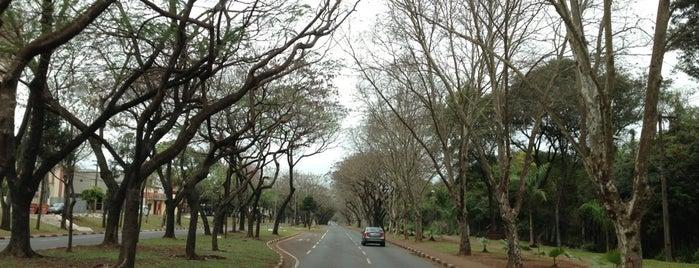 Avenida Paraná is one of Lista Pessoal.
