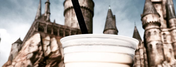 The Wizarding World of Harry Potter is one of Harry Potter sights.