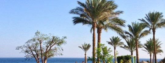 Renaissance Golden View Beach is one of Be Charmed @ Sharm El Sheikh.