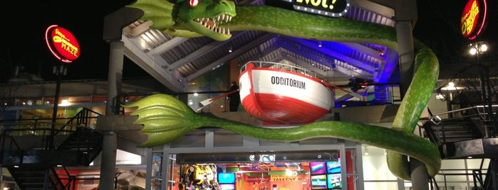 Ripley's Believe It Or Not! Odditorium is one of Entertainment.