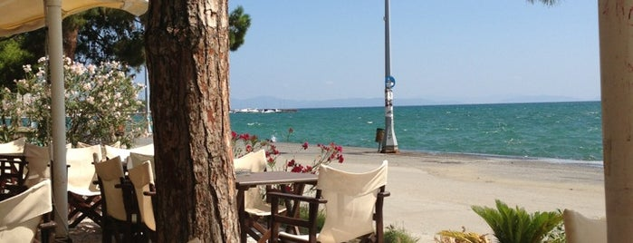 Aroma Cafe is one of Volos Top Cafe-Bar's.