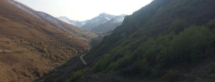 Anzer Yaylası is one of Karadeniz.