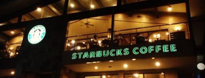 Starbucks Coffee is one of Favorite Food.