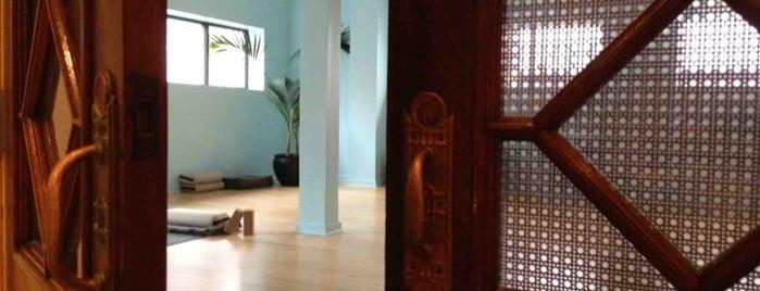 Tejas Yoga is one of Chicago Yoga Studios.