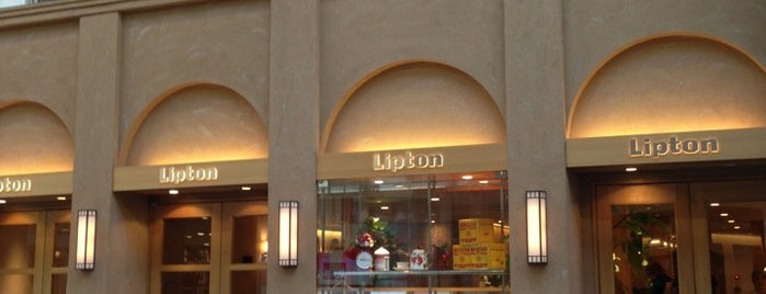 Lipton 三条本店 is one of VENUES of the FIRST store.