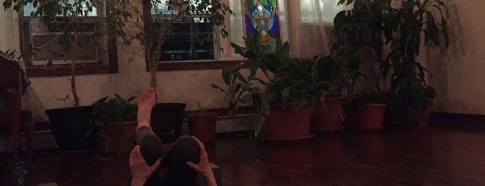 The Giving Tree Yoga Studio is one of Yoga @ New York City.