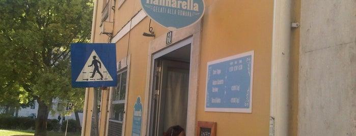 Nannarella is one of PT.