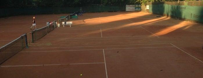 Теннисные корты в Екатерининском парке is one of Sport Spots.