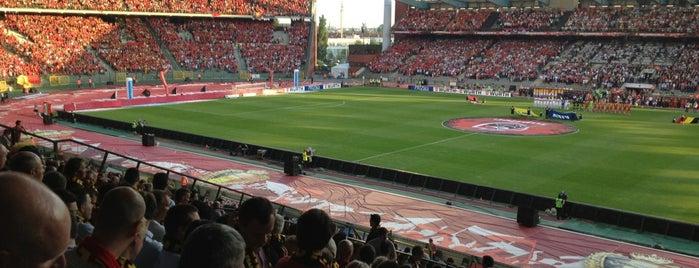 King Baudouin Stadium is one of Jupiler Pro League and Belgacom League - 2013-2014.