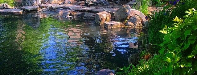 Osaka Garden is one of Hyde Park.