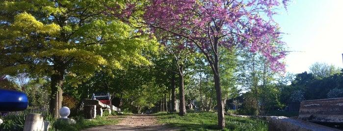 Liberty Lands Park is one of NEPA/SEPA/Phila Parks.