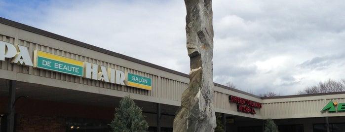 Stuyvesant Plaza is one of Albany.