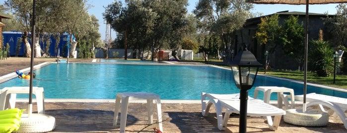 Assos Oleas Hotel is one of Gezi ,Turizm, Otel ve Doğal Yerler.