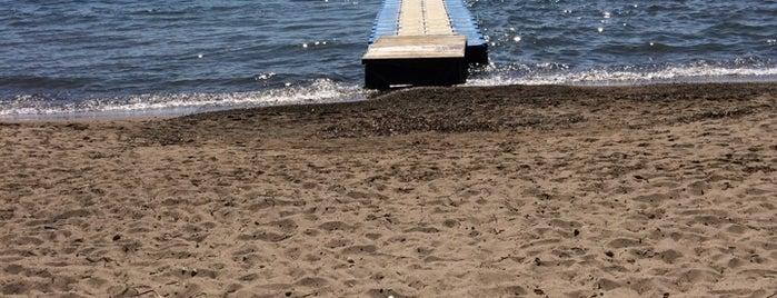 Sea & You Evleri Kadıkalesi / Turgutreis is one of Holiday.