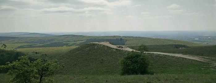 Kis-Kopasz is one of Budai hegység/Pilis.