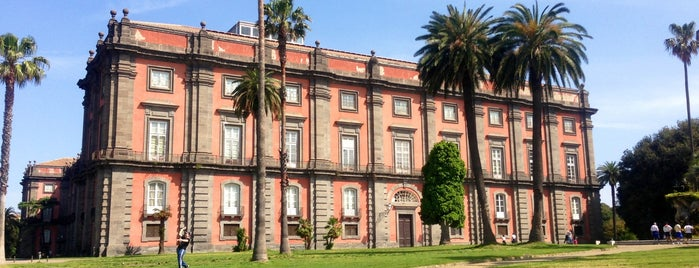 Museo di Capodimonte is one of South Italy.