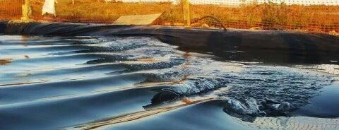 OrganicWave Surf Camp (ondas artificiais) is one of Preferências.