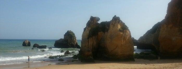 Praia do Alemão is one of Algarve.