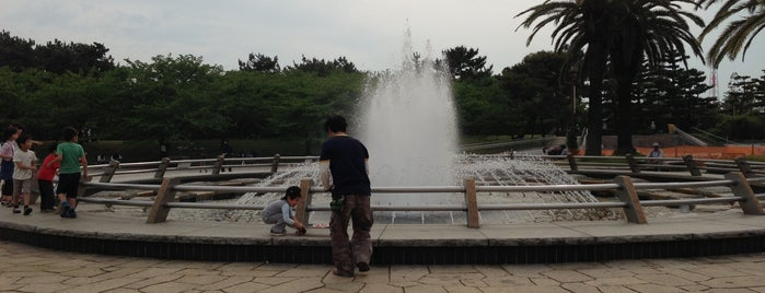 Hamadera Park is one of 公園.