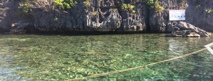 Siete Pecados Marine Park is one of All-time favorites in Philippines.