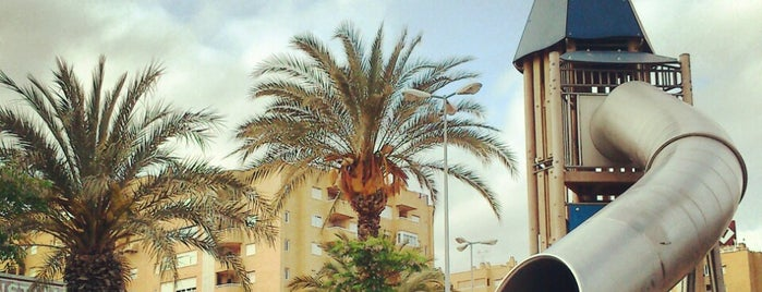 Paseo Joan Fuster is one of Alicante urban treasures.
