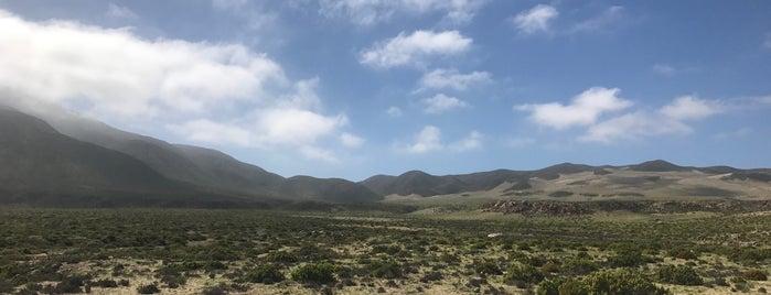 Parque Nacional Llanos De Challe is one of Campings.