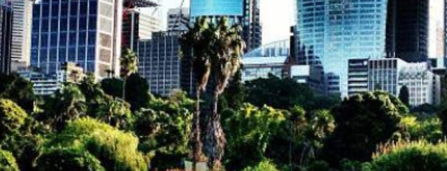 Royal Botanic Garden is one of Australia Trip.