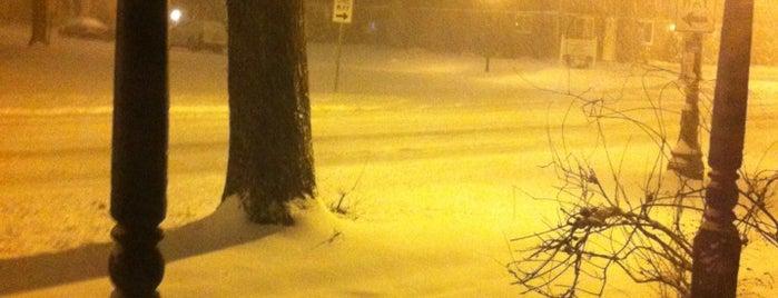 Snowpocalypse FW 2013 is one of wisdom2.