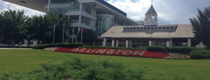 Arlington International Racecourse is one of Блудняк.