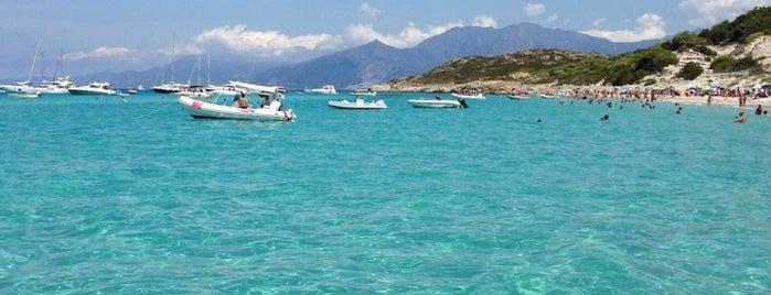 Plage de Saleccia is one of Corsica.
