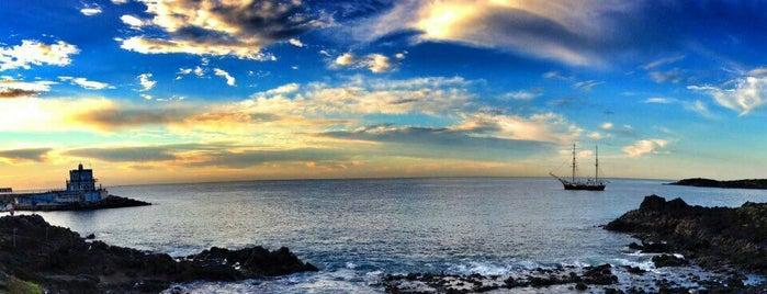 Playa de Las Galletas is one of Islas Canarias: Tenerife.