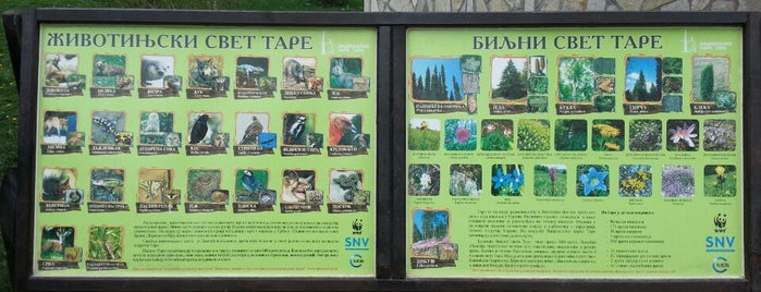 """Centar za posetioce Javnog preduzeca """"Nacionalni park Tara"""" is one of Tourist Info Centres."""