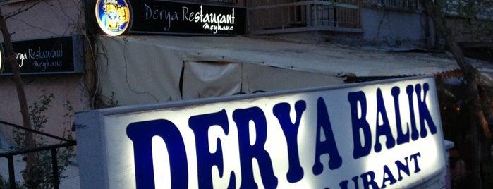Derya Meyhane is one of Gurme Ankara.