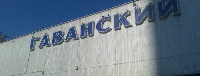 """Гаванский is one of Район общежития на """"Шевченко""""."""