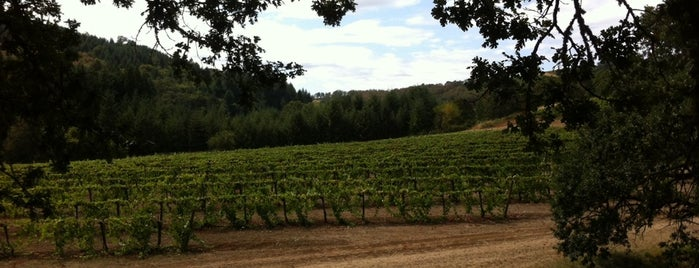 Yamhill Valley Vineyards is one of Daily Sip Deals.