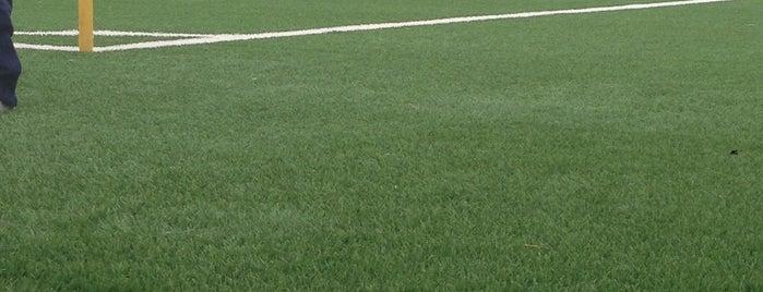 Stadio Cornaredo is one of Fussballstadien Schweiz.