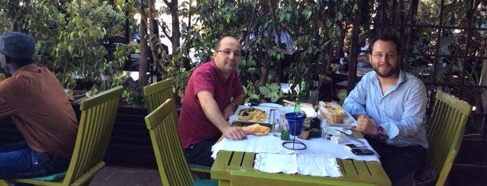 Mediterraneo is one of Favorite Food.