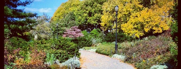 Heather Garden is one of Tourist attractions NYC.