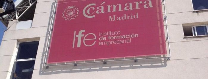 Instituto de Formación Empresarial de la Cámara de Madrid (IFE) is one of Consultoría/Formación.
