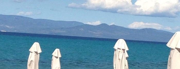 γλαρόκαβος beach bar is one of Off to Chalkidiki ♥ (drinks 'n' food).