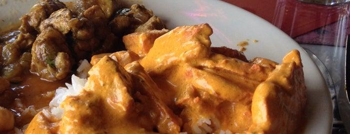 Cilantro Indian Restaurant Tampa Fl
