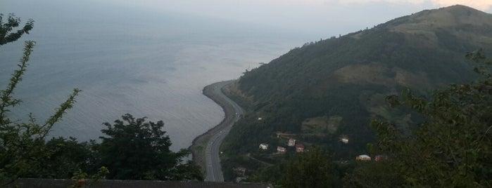 Çarşıbaşı is one of Trabzon <3.
